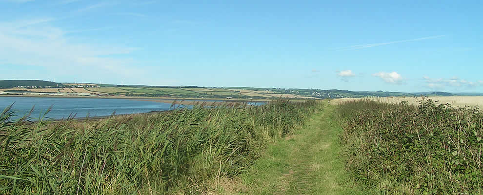 Isley Marsh Nature Reserve by the River Taw